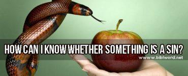 ¿Cómo puedo saber si algo es pecado?