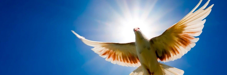 ¿Quién creó al Espíritu Santo?