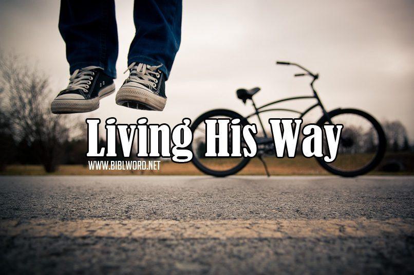 Viviendo Su Camino
