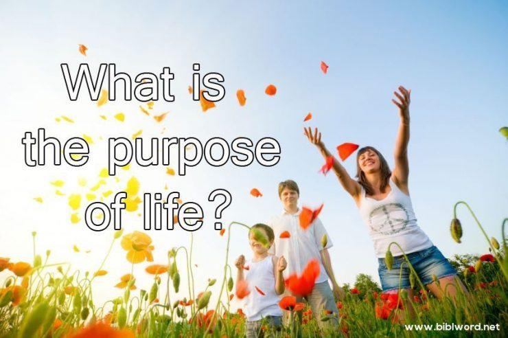 ¿Qué es el propósito de la vida?