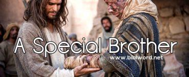 Un hermano especial