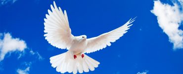 How to experience the fullness of the Holy Spirit?