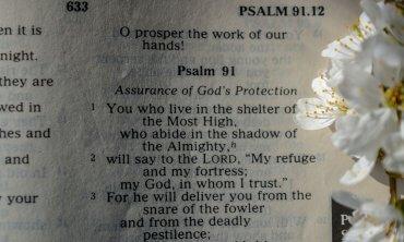 Old Testament Bible books antiguo